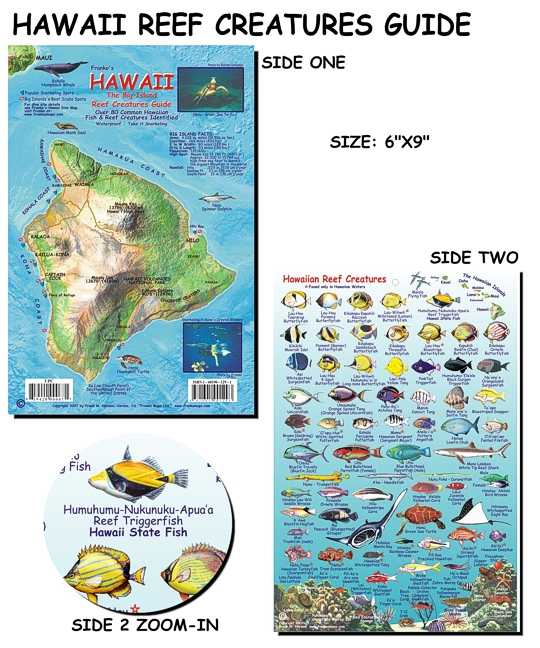 Hawai 39 i reef creatures guide fish card for Hawaii fish guide